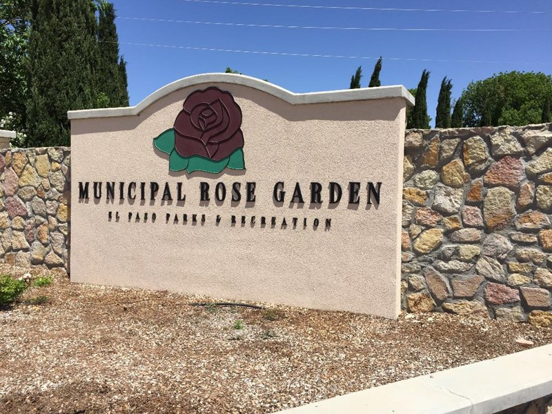 A Couple Of Weeks Ago, I Was Driving In El Paso When I Passed A Rose Garden.  I Was In A Hurry, So I Was Not Able To Stop In, ...
